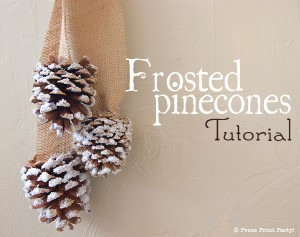 Frosted Pinecones Tutorial by Press Print Party