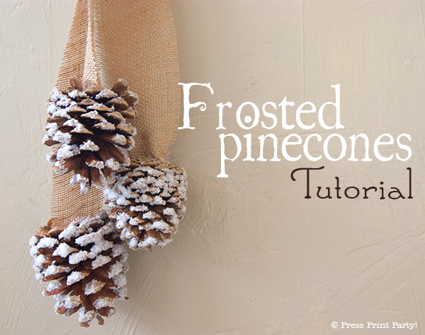 Frosted Pinecones Tutorial