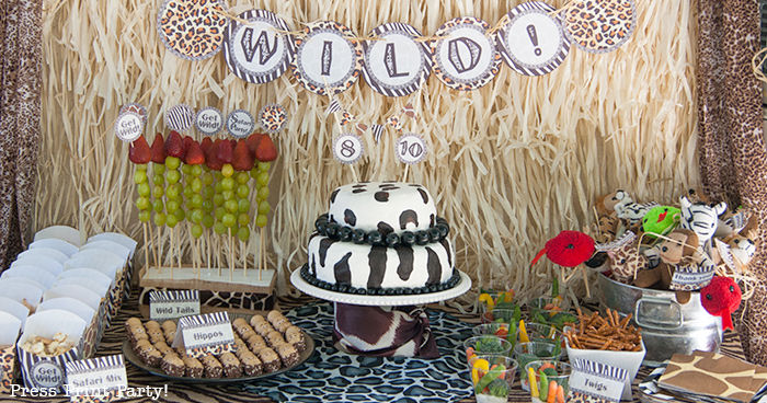Get Wild Safari Theme Party