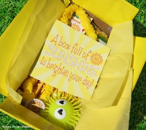 A Box Full of Sunshine to Brighten Someone's Day - Sunshine Printables by Press Print Party!
