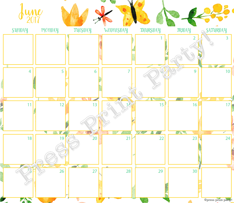 2017 Calendar Printable for Bullet Journals - Vibrant Watercolors - By Press Print Party! June 2017