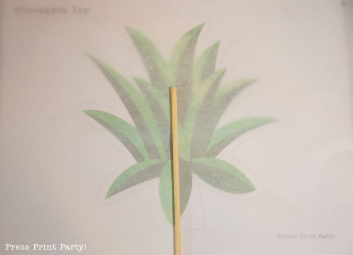 Party like a Pineapple -Pineapple party - Luau Party - Pineapple cake how to make the leaves- by Press Print Party!
