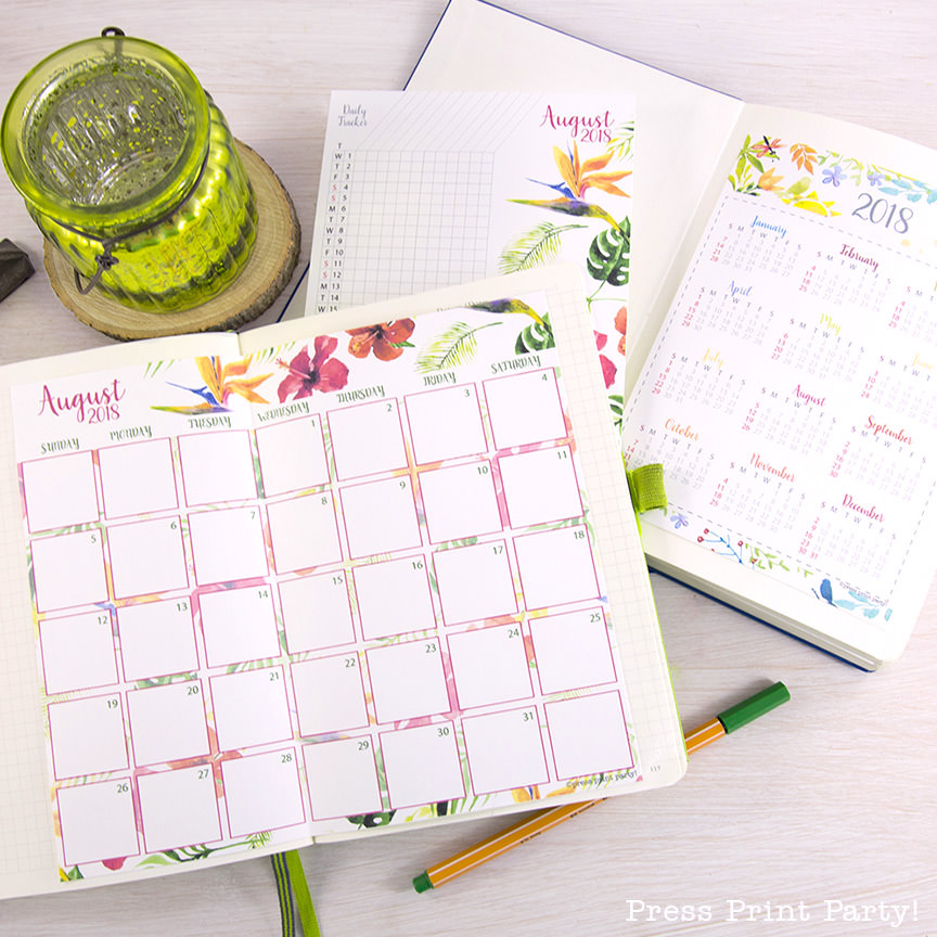 picture relating to Bullet Journal Monthly Calendar Printable titled 2018 Calendar Established, Bullet Magazines, Printable Watercolor