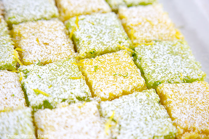 Lemon and Lime square bars close up