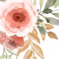 Peach Flowers Theme