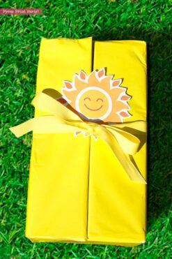 Sunshine box printables - Sunshine Gift Box, Cheer Up Care package, Sympathy Gift, Bad Day Gift, Get Well Package, Box of Sunshine, DIY Gift- Press Print Party!