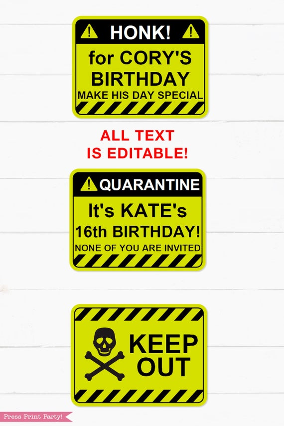Lime Green Quarantine Birthday Photo Booth Props and Signs, Editable Birthday Yard Sign, Drive-by birthday, For Car or Photos, Party Decor, INSTANT DOWNLOAD