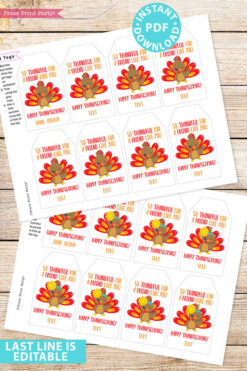EDITABLE Thanksgiving Tags for Friends Printable Template, For Kids Boy or Girl Turkey, Edit last line, Gift Tags, INSTANT DOWNLOAD
