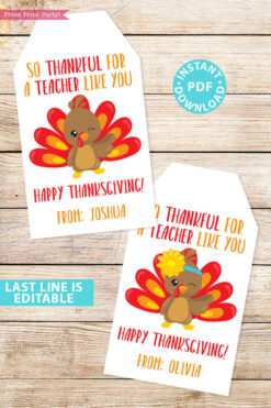 EDITABLE Thanksgiving Tags for Teacher Printable Template, For Kids Boy or Girl Turkey, Edit last line, Teacher Gift Tags, INSTANT DOWNLOAD