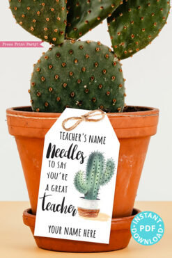 EDITABLE Teacher Appreciation Gift Tags Printable, Cactus, Teacher Thank You Gift Tags, Pun, Needles to Say Great Teacher, INSTANT DOWNLOAD cactus gift