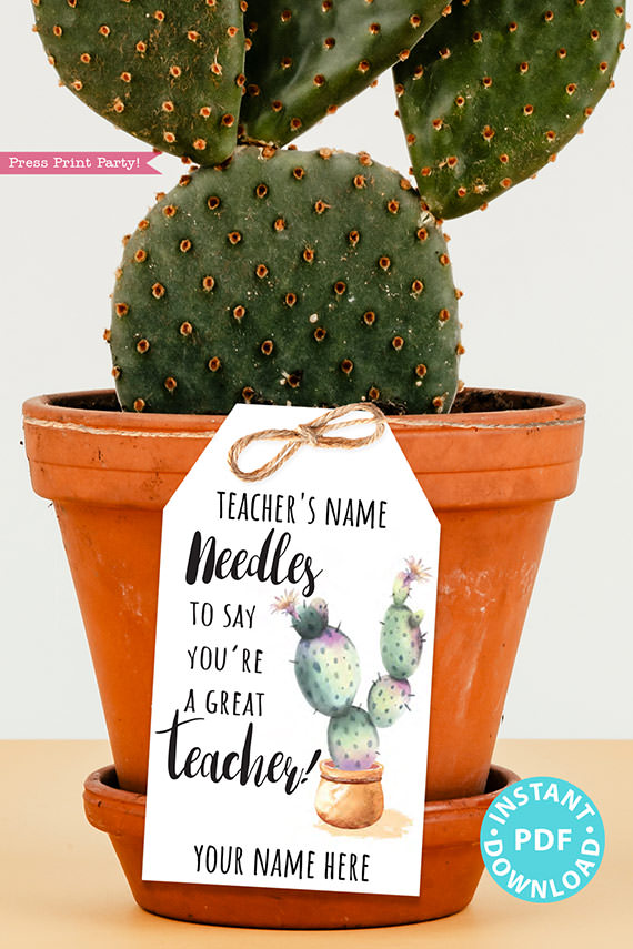 EDITABLE Teacher Appreciation Gift Tags Printable, Teacher Thank You Gift Tags, Cactus Pun, Needles to Say Great Teacher, INSTANT DOWNLOAD cactus gift