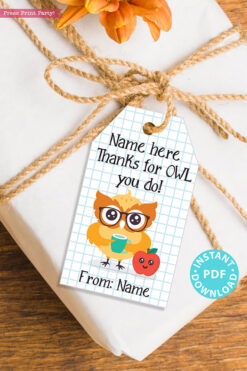 "EDITABLE Teacher Appreciation Gift Tags Printable, Thank You Gift for Teacher or Staff, ""Thanks for Owl you do!"" INSTANT DOWNLOAD"