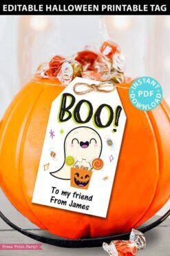 EDITABLE Halloween Tag Printable, Boo, Halloween Party Favors, Goodie Bag, Kids Halloween, Treat Bag, Candy Bag Tag, INSTANT DOWNLOAD
